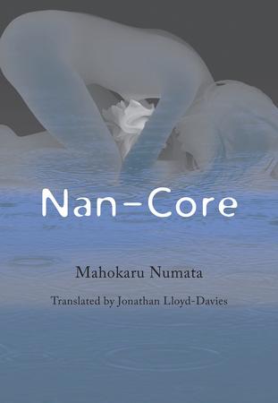 Nan-Core Novel (Hardcover)