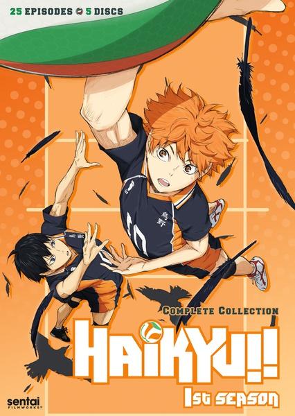 Haikyu!! Season 1 Complete Collection DVD