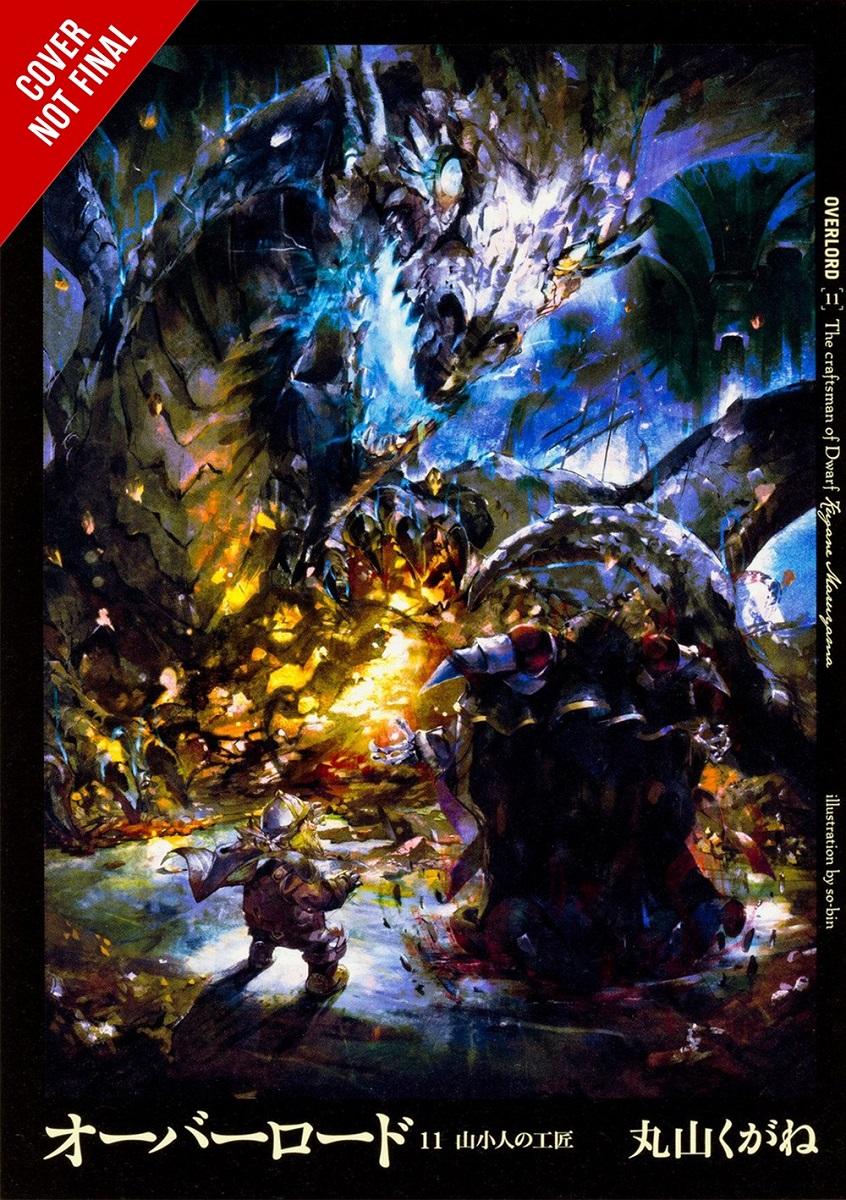 Overlord Novel Volume 11 (Hardcover)