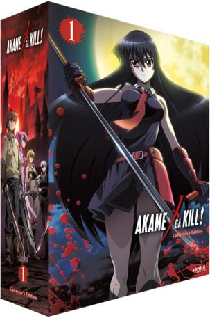 Akame ga Kill Collection 1 Collectors Edition Blu-ray/DVD
