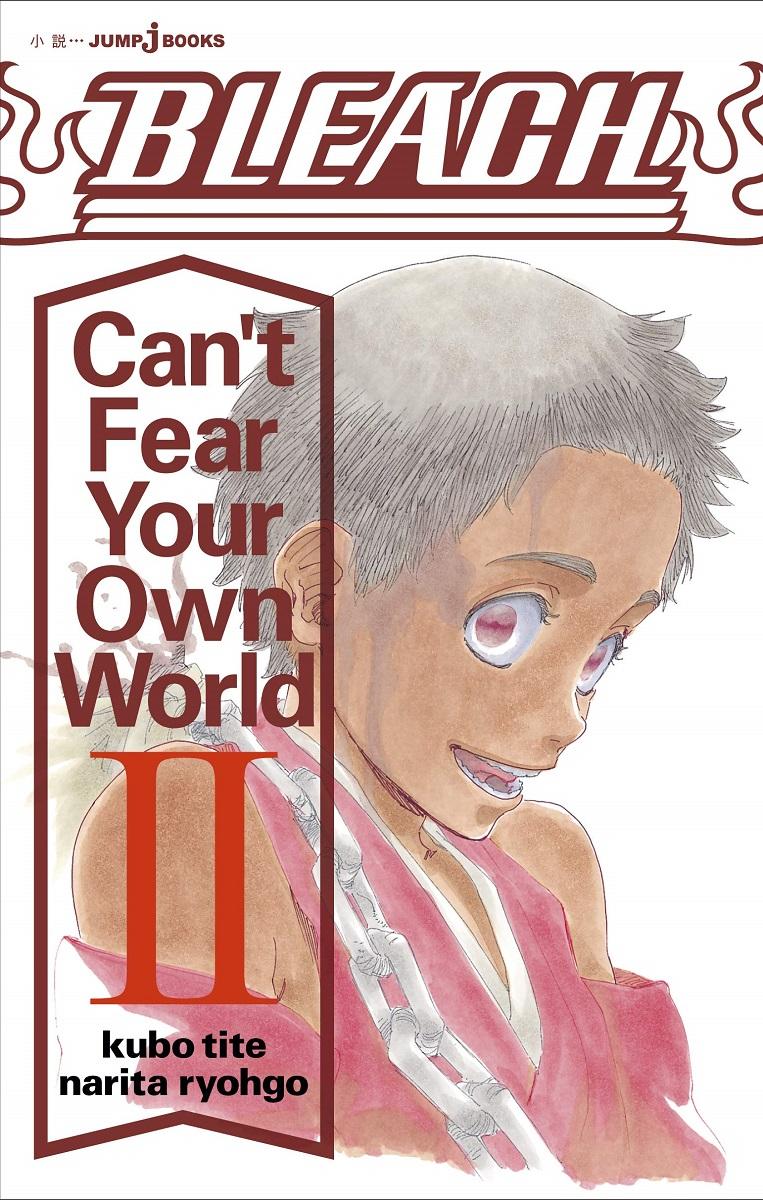 Bleach Cant Fear Your Own World Novel Volume 2