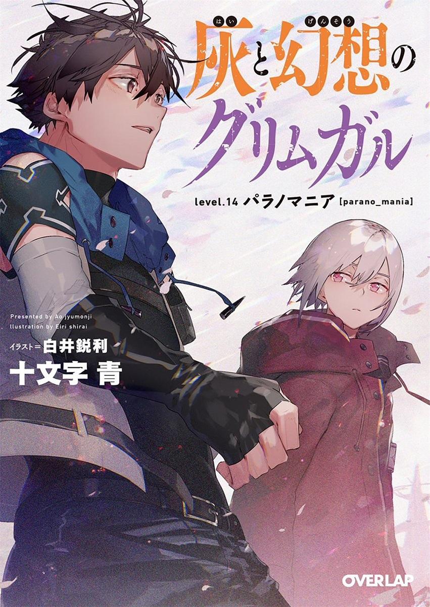 Grimgar of Fantasy and Ash Novel Volume 14
